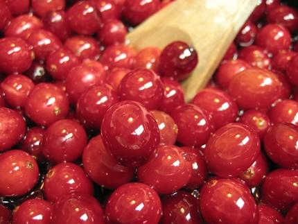 cranberry-lip-gloss