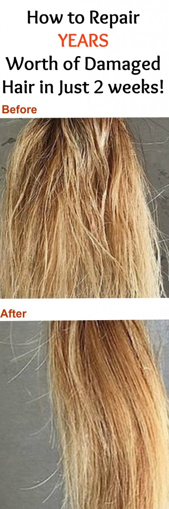 How To Repair Years Worth Of Damaged Hair