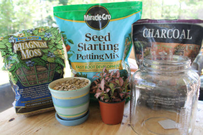 activated charcoal for gardening