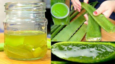 oil and aloe vera